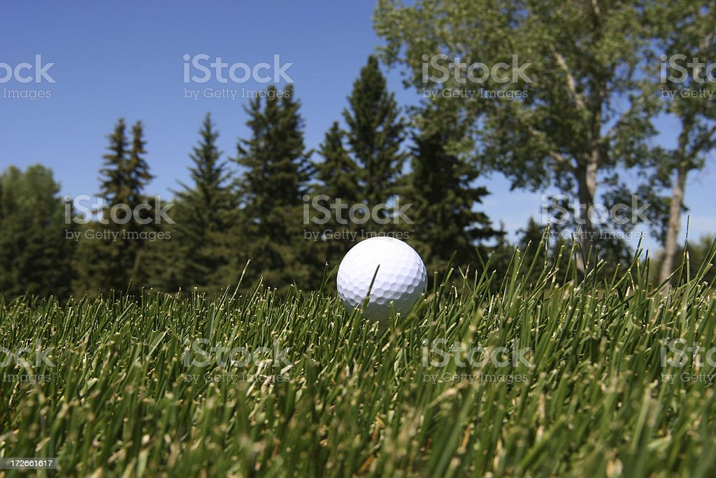 Golf # 5 royalty-free stock photo