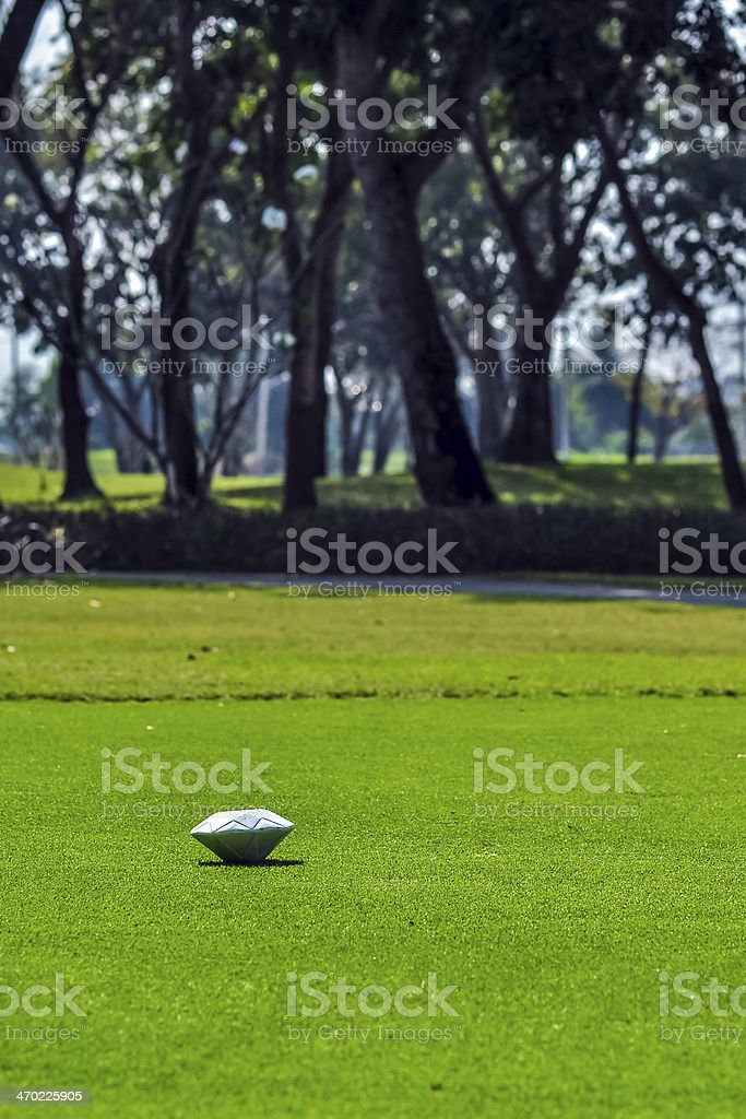 Golf pin 1 stock photo