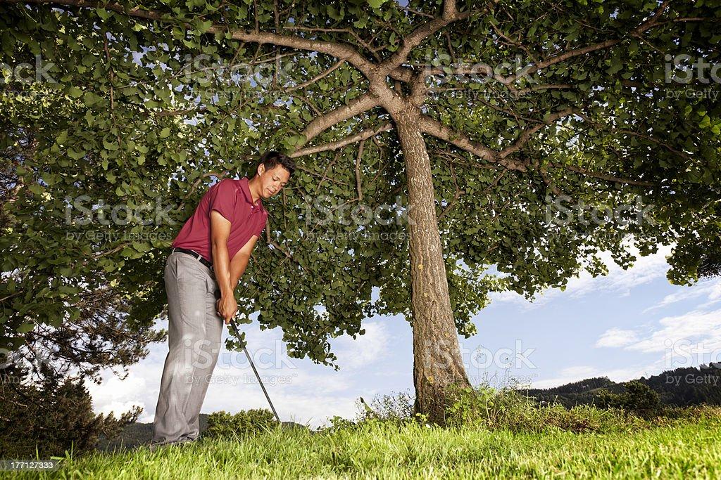 Golf player under tree. royalty-free stock photo
