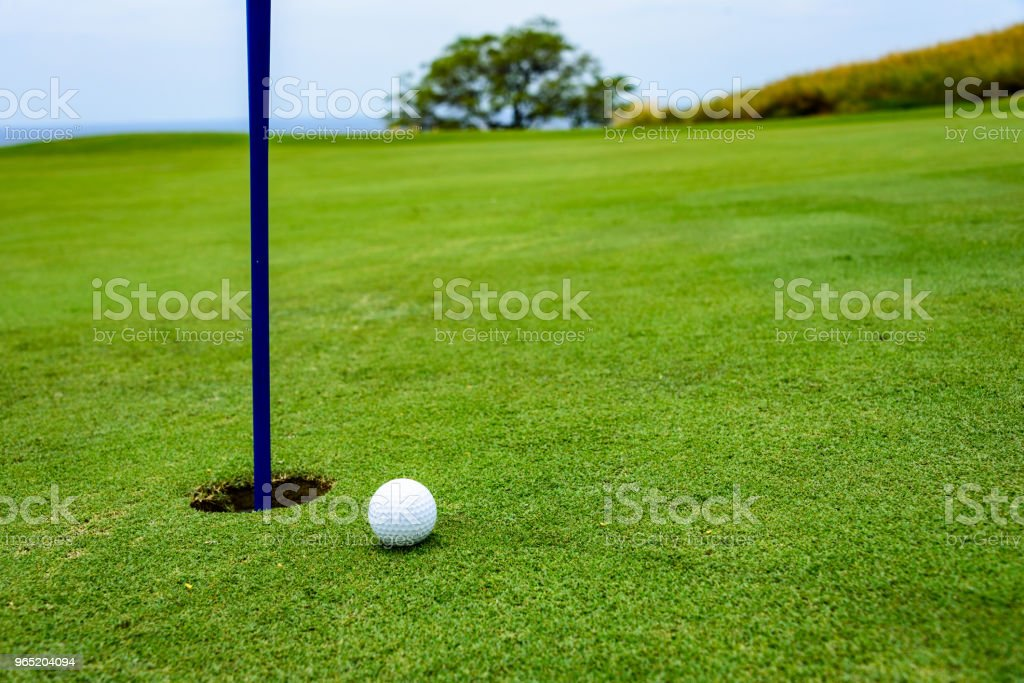 Golf putting detail royalty-free stock photo