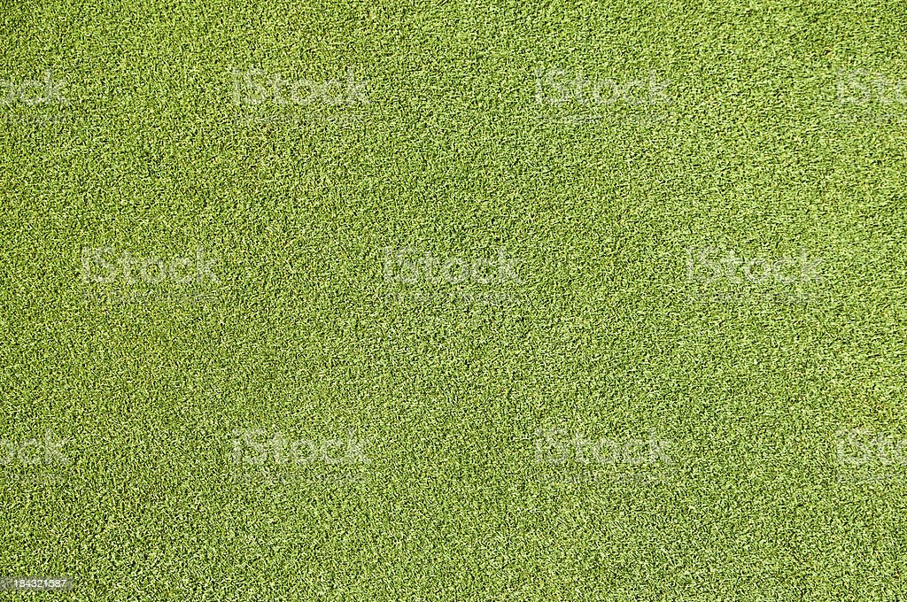 golf putting green grass directly above stock photo