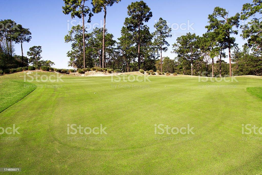 Golf putting green royalty-free stock photo