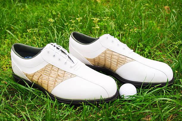Golf Schuh und ball – Foto
