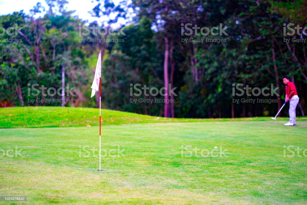 Golf sport concept, flag on green golf on blurred golfer and tree in...