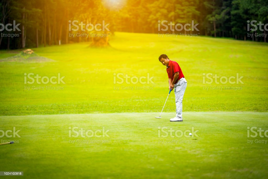Golf sport concept, golfer putting golf ball to hole on daytime of...