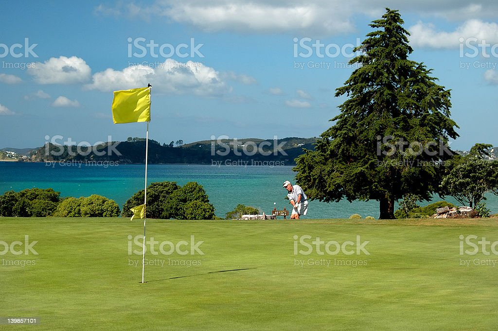 Golf - The Approach royalty-free stock photo