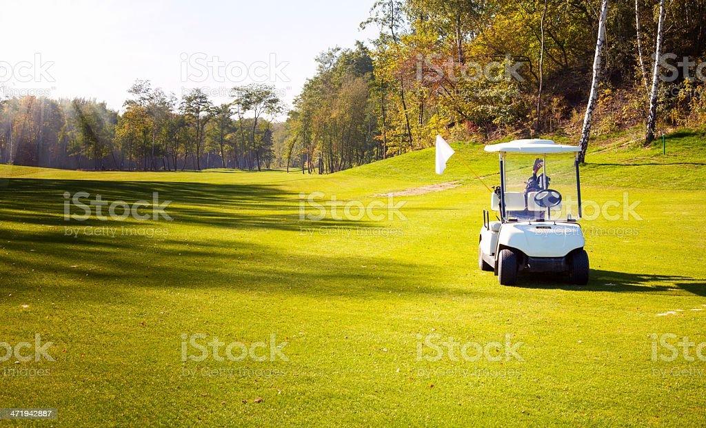golf cart auto sul campo di golf course - Foto stock royalty-free di Albero