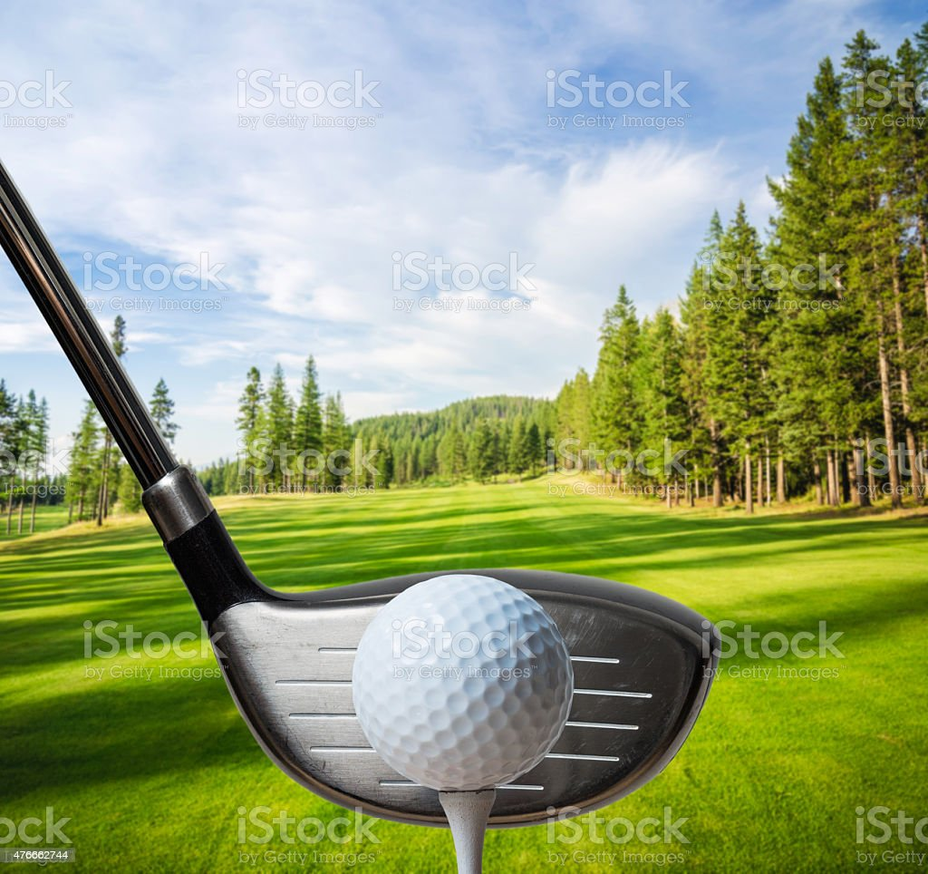 Golfer about to hit a golf ball stock photo