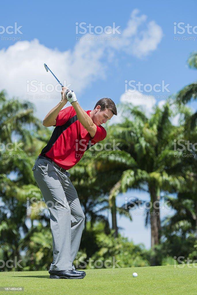 Golfer Backswing royalty-free stock photo