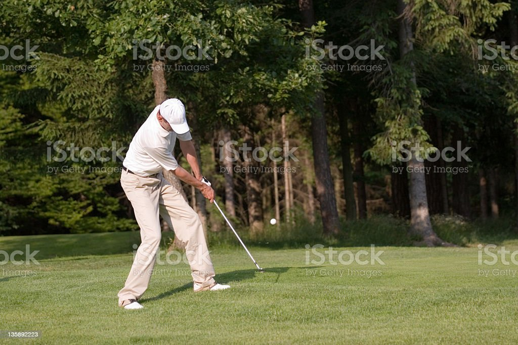 Golfer chipping to the green royalty-free stock photo