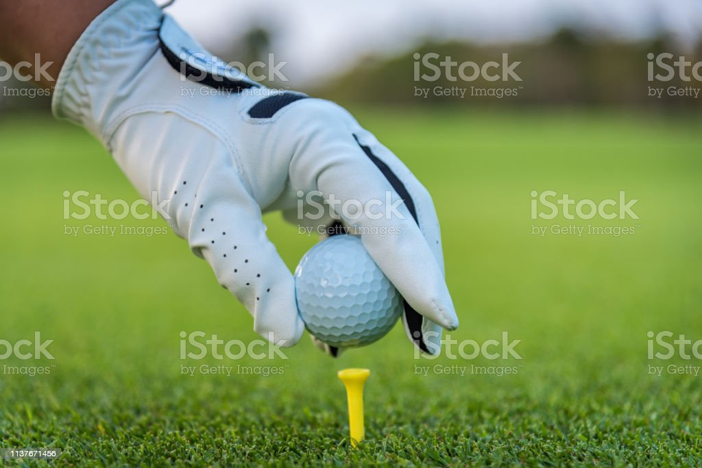 A golfer glove hand putting golf ball on tee in golf course with...