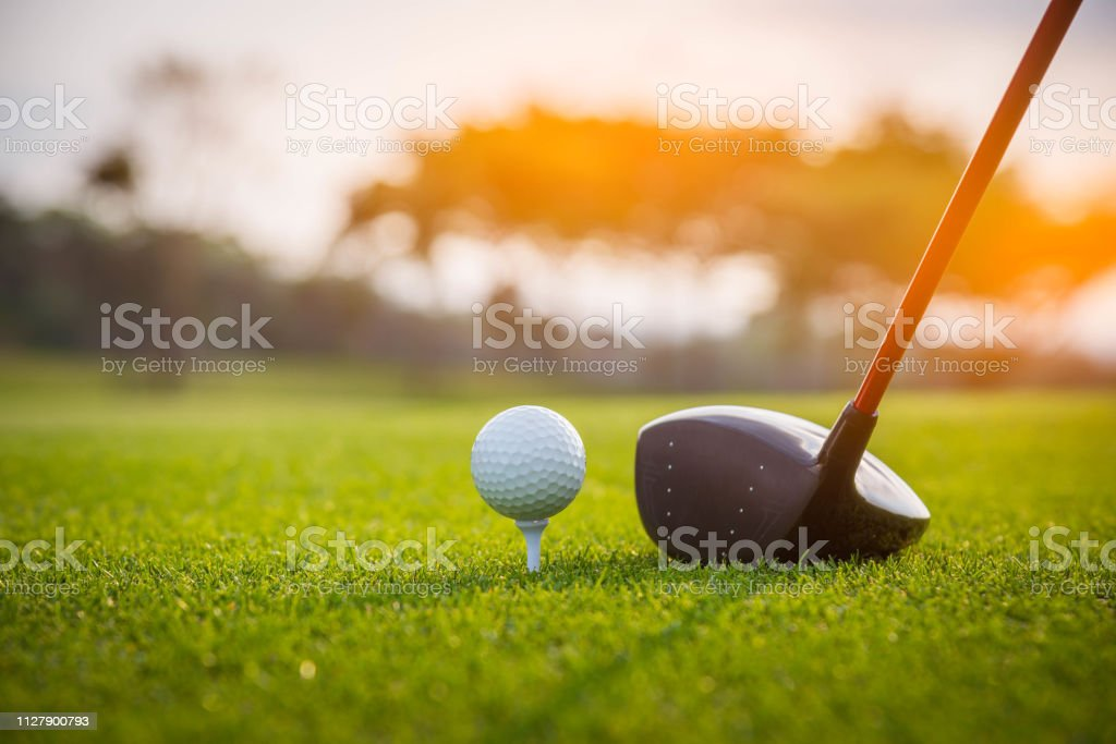 Golfer is putting golf ball on green grass at golf course for game...