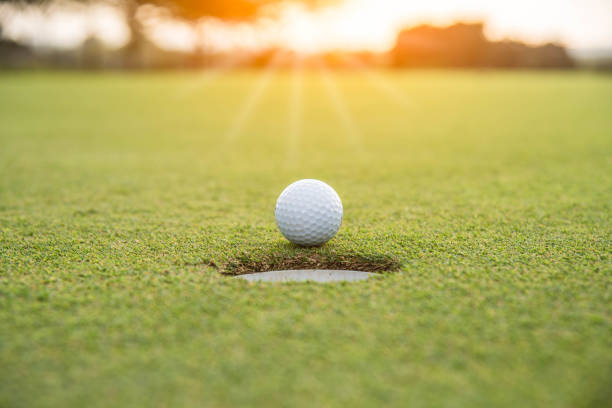 Golfer is putting golf ball on green grass at golf course for game with blur background and sunlight ray Golfer is putting golf ball on green grass at golf course for game with blur background and sunlight ray golf ball stock pictures, royalty-free photos & images