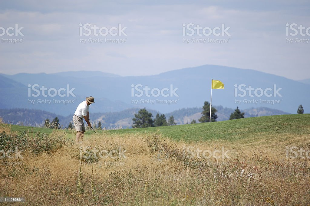 Golfer putting at Gallaghers Canyon royalty-free stock photo