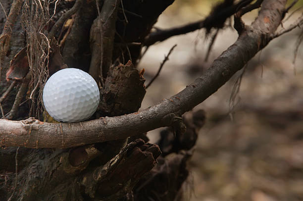 Golfer's nightmare