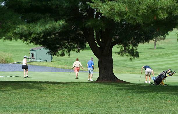 Golfen – Foto