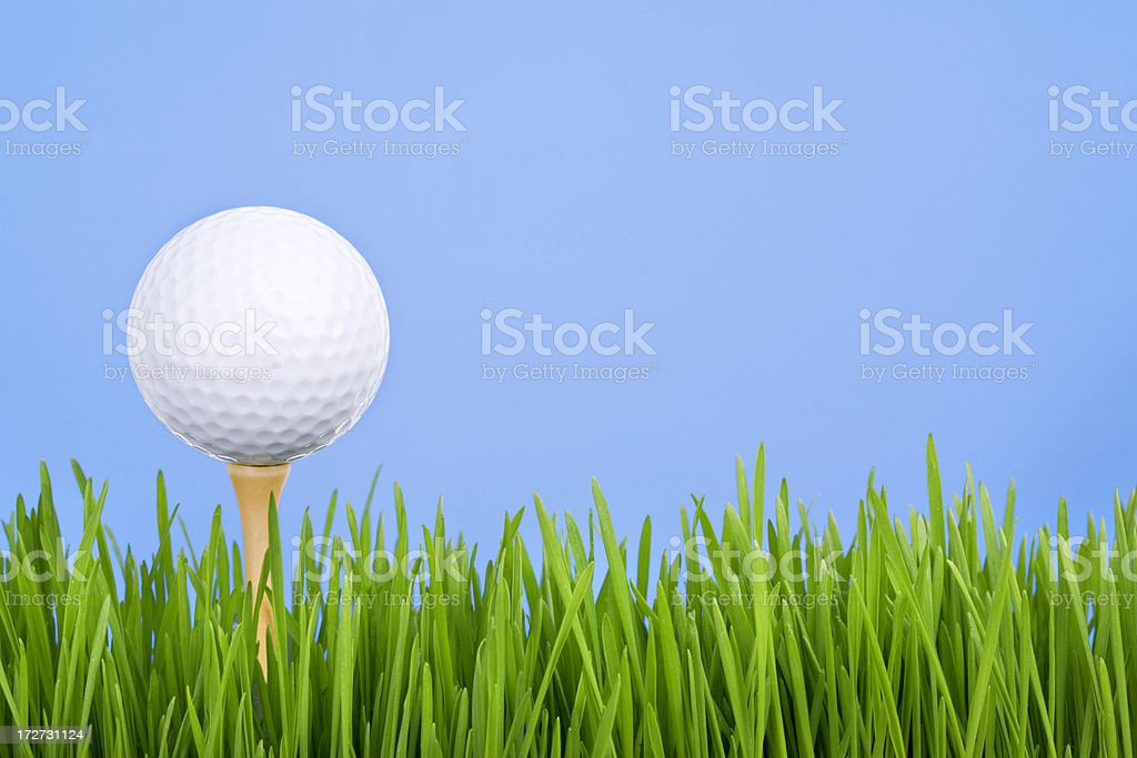Golfing (XL) royalty-free stock photo
