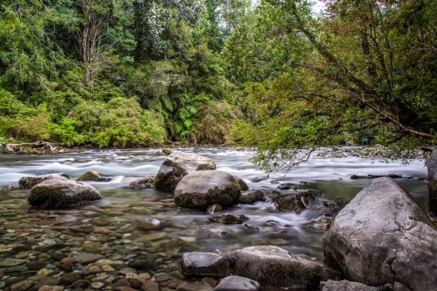 Gol-Gol Flusses im Nationalpark Puyehue im chilenischen Patagonien – Foto