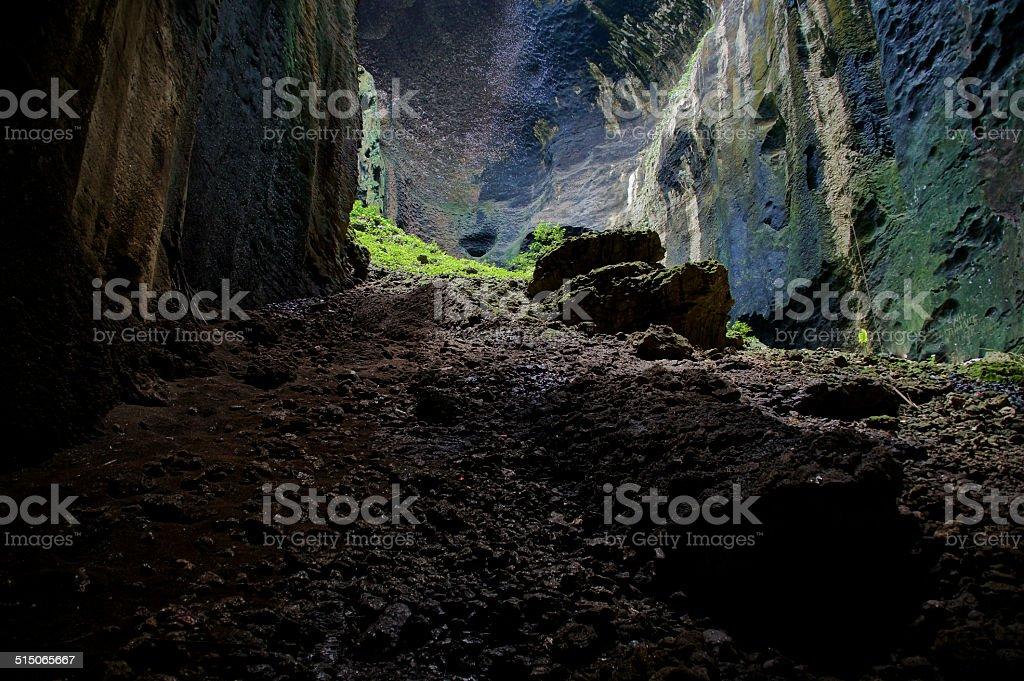 Gomantong Cave stock photo