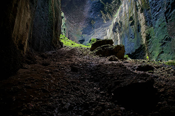 der gomantong höhle - wasserfledermaus stock-fotos und bilder