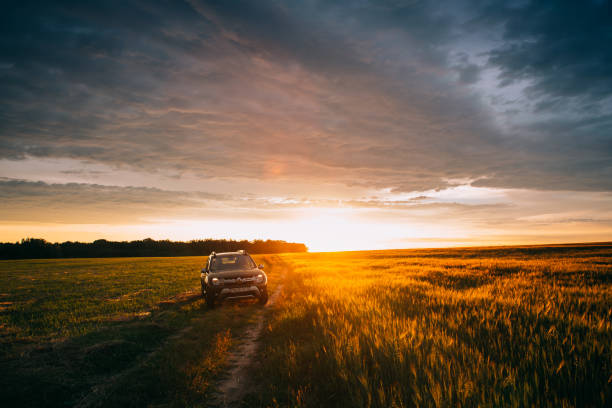 Gomel, Belarus. Renault Duster Or Dacia Duster Suv In Road Through Summer Wheat Field In Amazing Sunset Time. Duster Produced Jointly By French Manufacturer Renault stock photo
