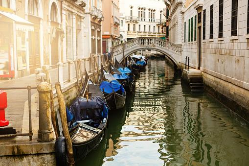 Gondolas parked near St. Marks Square of Venice, Italy