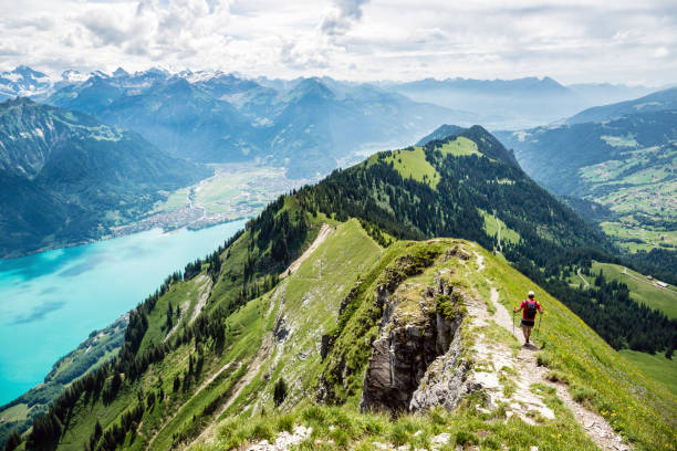 Gone walk between Augstmatthorn and Harder near Interlaken, Bernese Oberland, Switzerland Gratwanderung zwischen Augstmatthorn und Harder bei Interlaken, Berner Oberland, Schweiz switzerland stock pictures, royalty-free photos & images