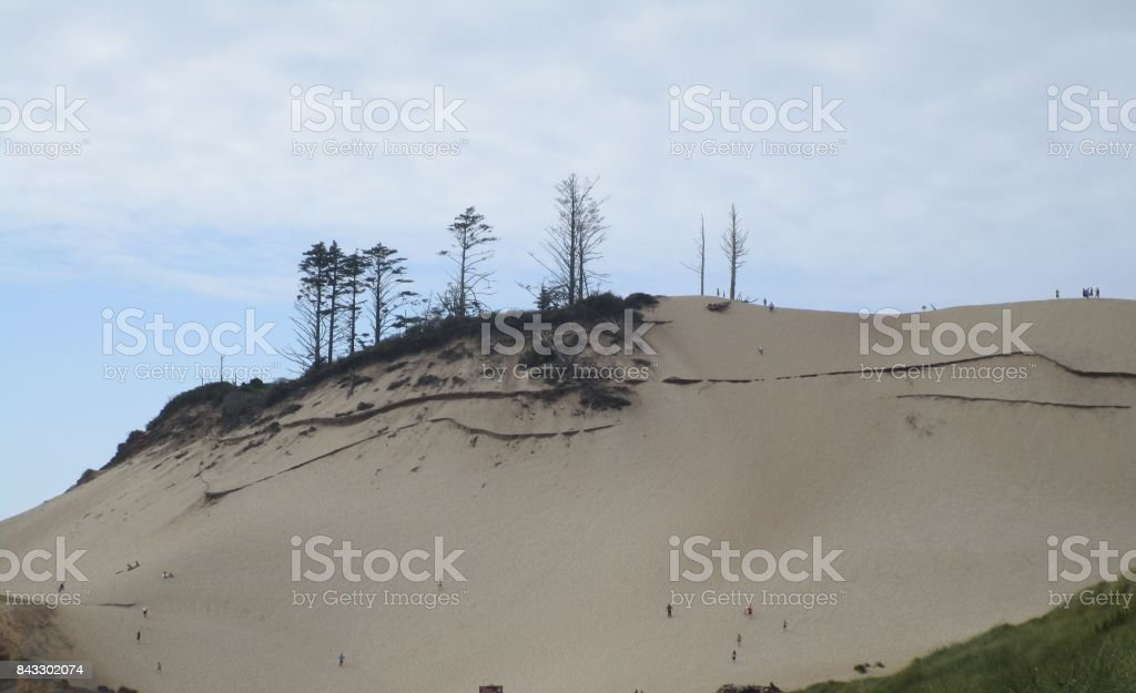 A good day for sand surfing stock photo