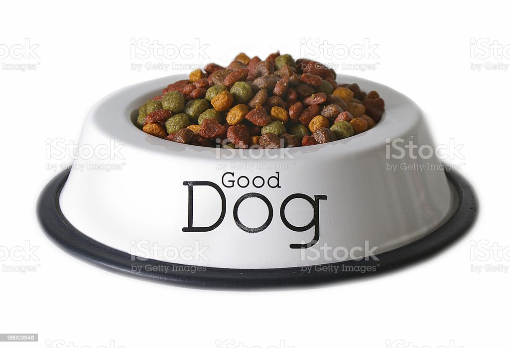 Good Dog royalty-free stock photo
