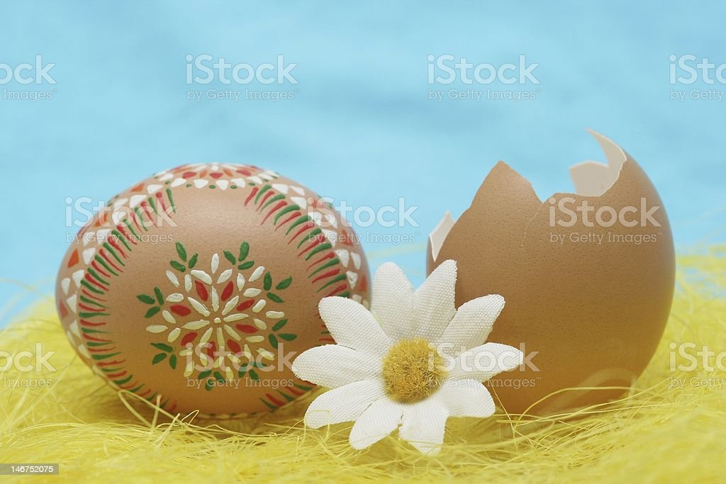 Good eggs royalty-free stock photo