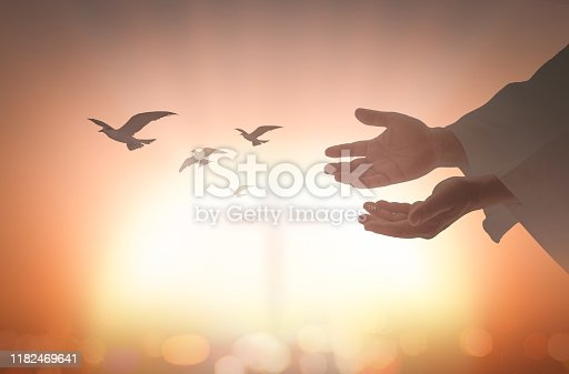 Jesus Christ open empty hands with birds flying on blurred cross background