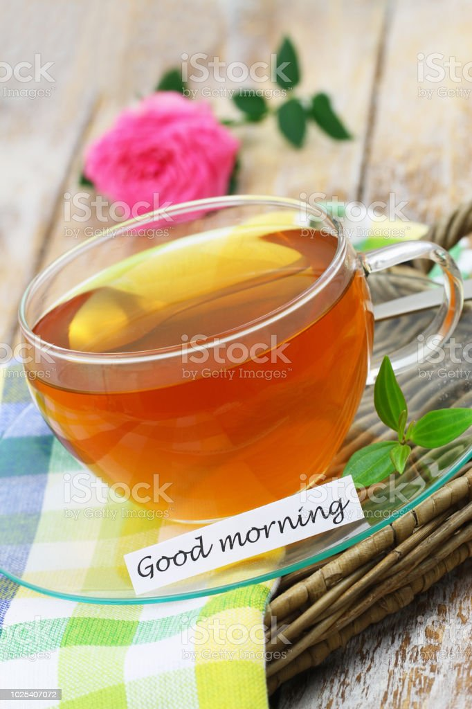 Good Morning Card With Cup Of Tea And Pink Wild Rose Stock Photo