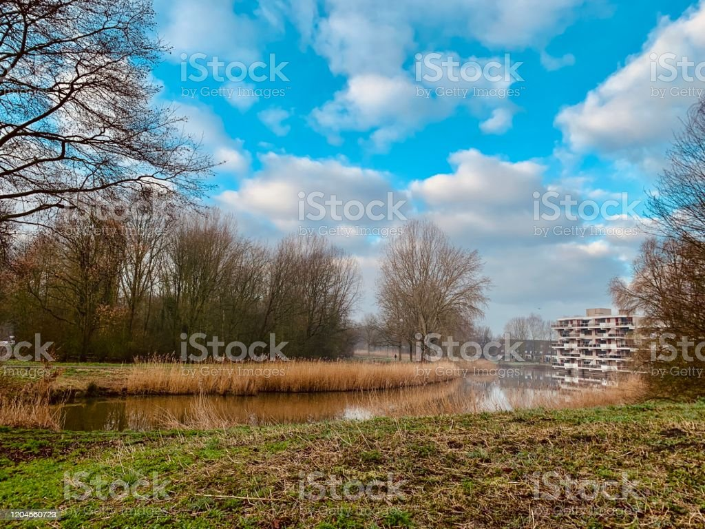 Good Morning Nature Stock Photo Download Image Now Istock