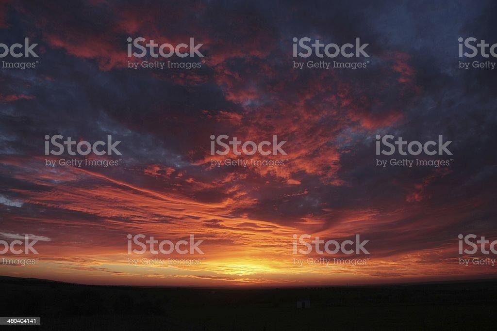 Good Morning stok fotoğrafı