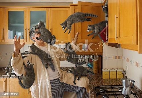istock Good Morning! 843803958