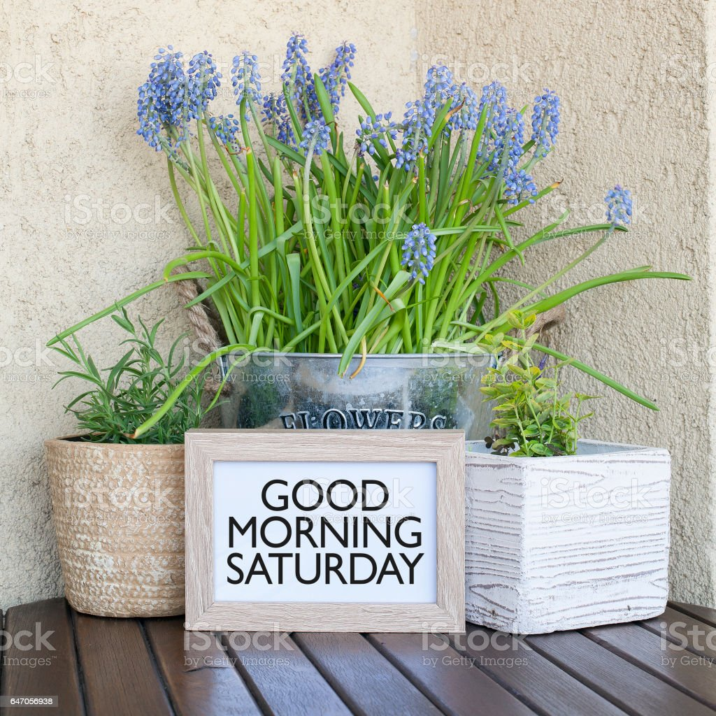 Good Morning Saturday Stock Photo More Pictures Of Greeting Istock