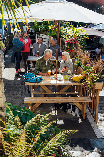 A beer garden in a Polperro, Cornwall. There are senior and mature adults sitting on the tables, enjoying a pint in the sun and taking a break from hiking round the fishing village. There is a border collie lying underneath one of the tables.