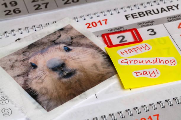 good wishes for groundhog day - groundhog day fotografías e imágenes de stock