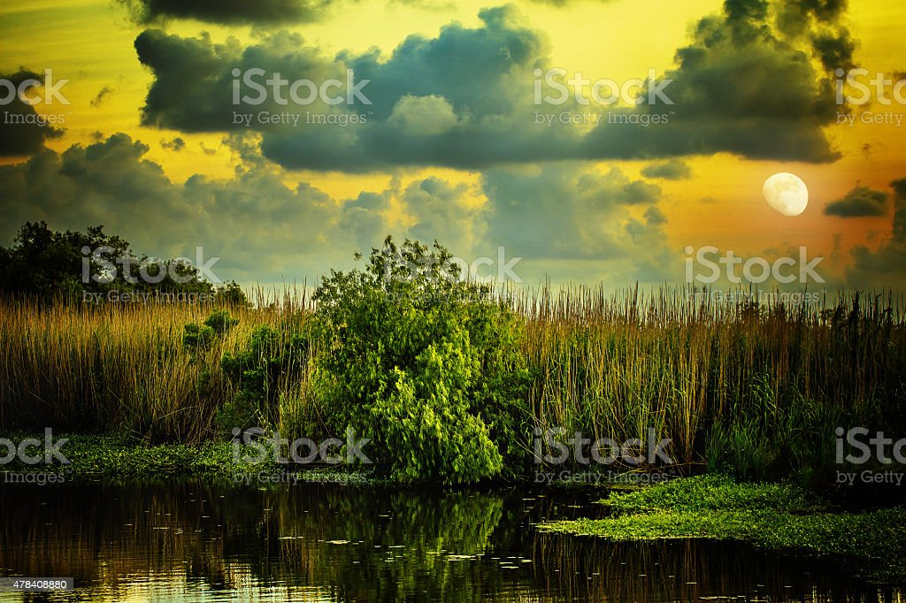 Goodnight, Louisiana stock photo