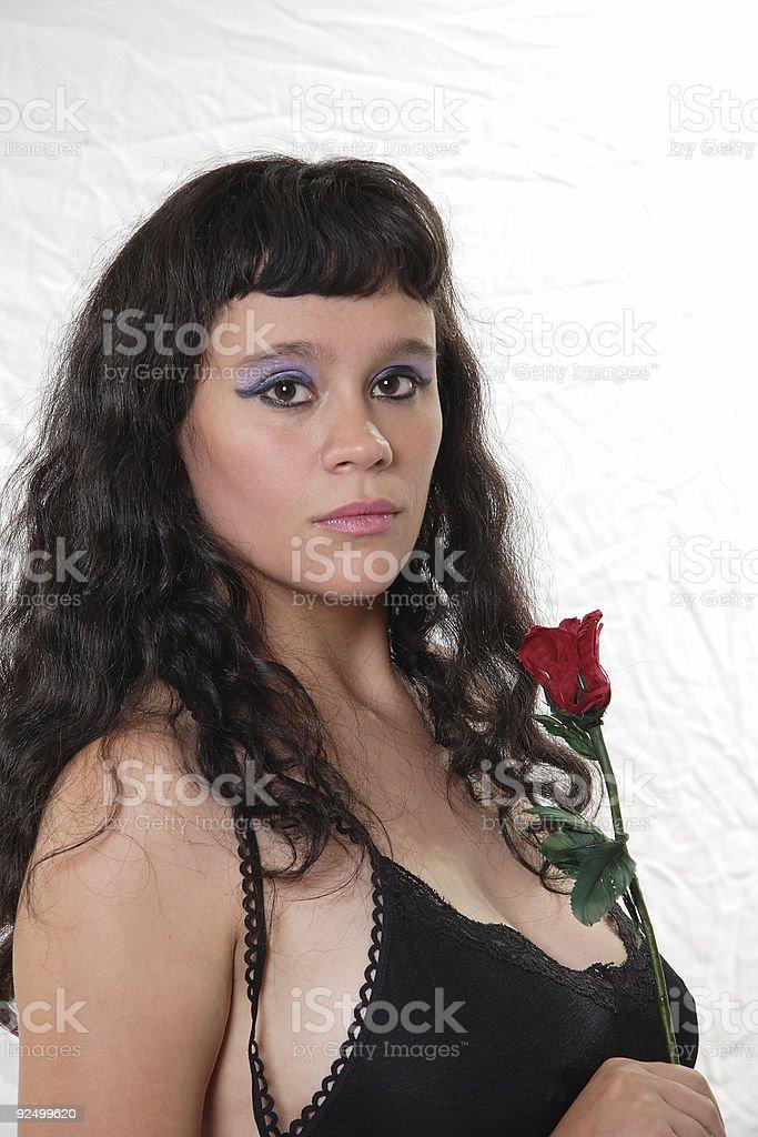 Goodnight Rose royalty-free stock photo