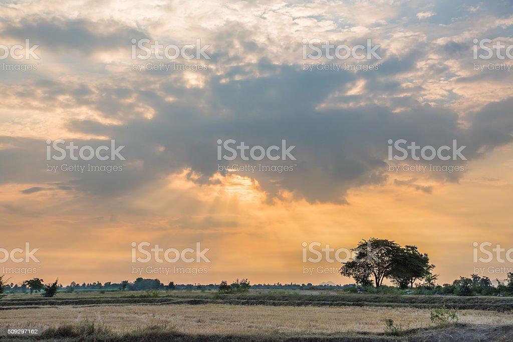 goog morning sunrise stock photo