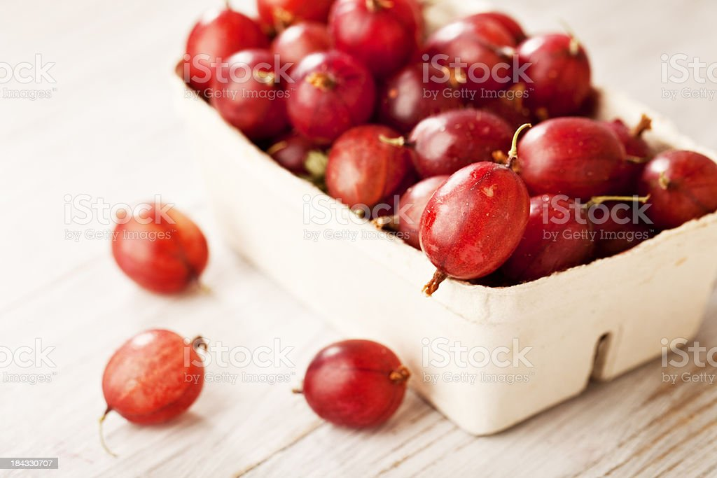 goose berries stock photo