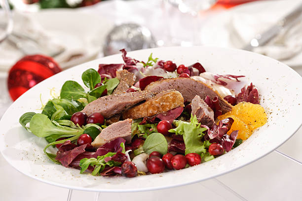 goose breast on lamb's lettuce, cranberries, orange filets on pl - gänsefett stock-fotos und bilder
