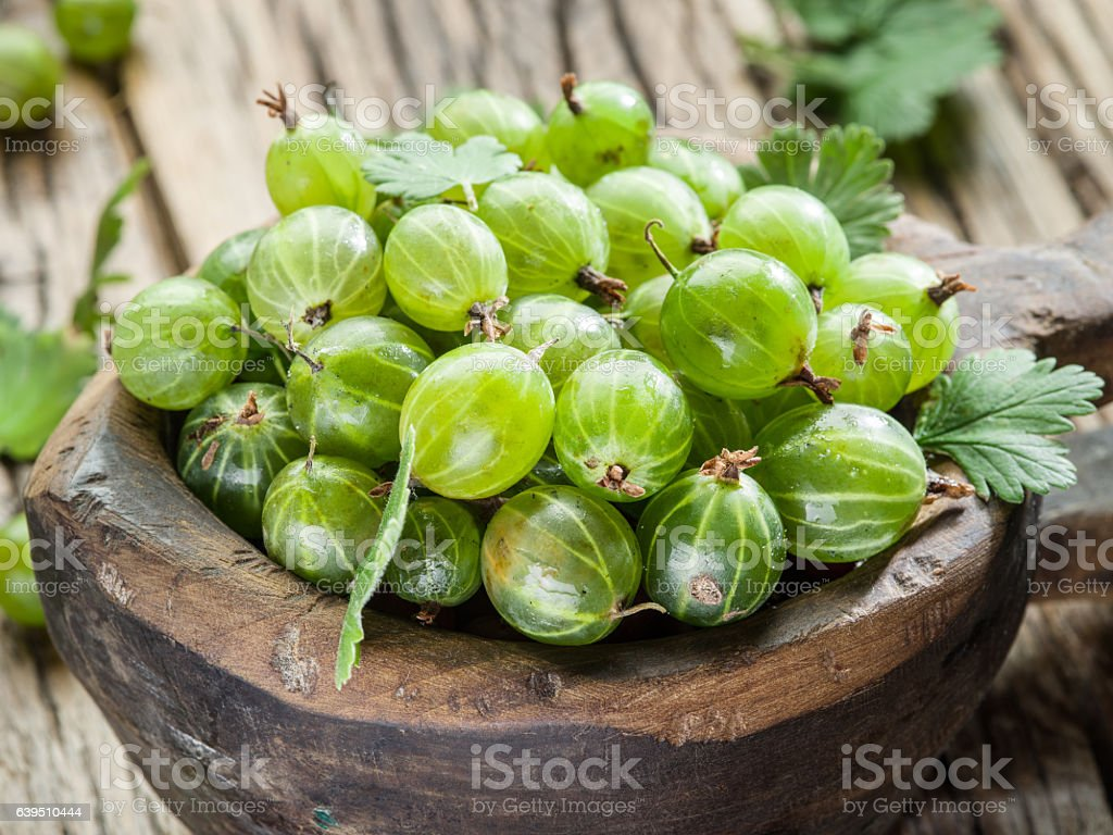 Gooseberries in the wooden bowl. stock photo