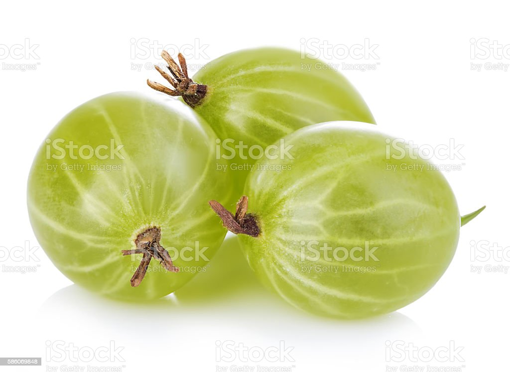 Gooseberries isolated on white background stock photo