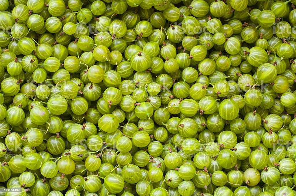 Gooseberry background royalty-free stock photo
