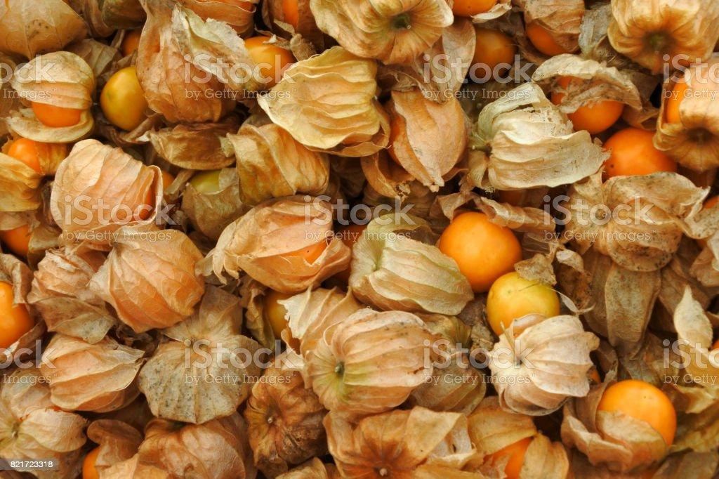 Gooseberry background texture stock photo