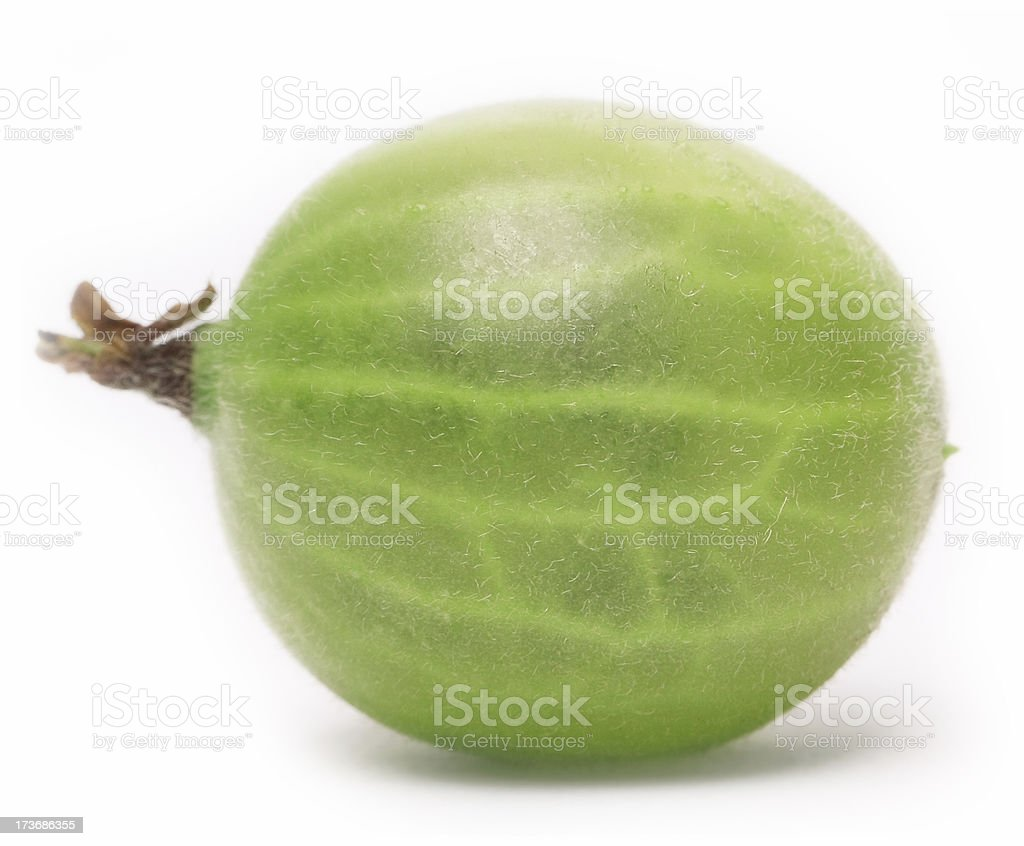 gooseberry isolated on white royalty-free stock photo