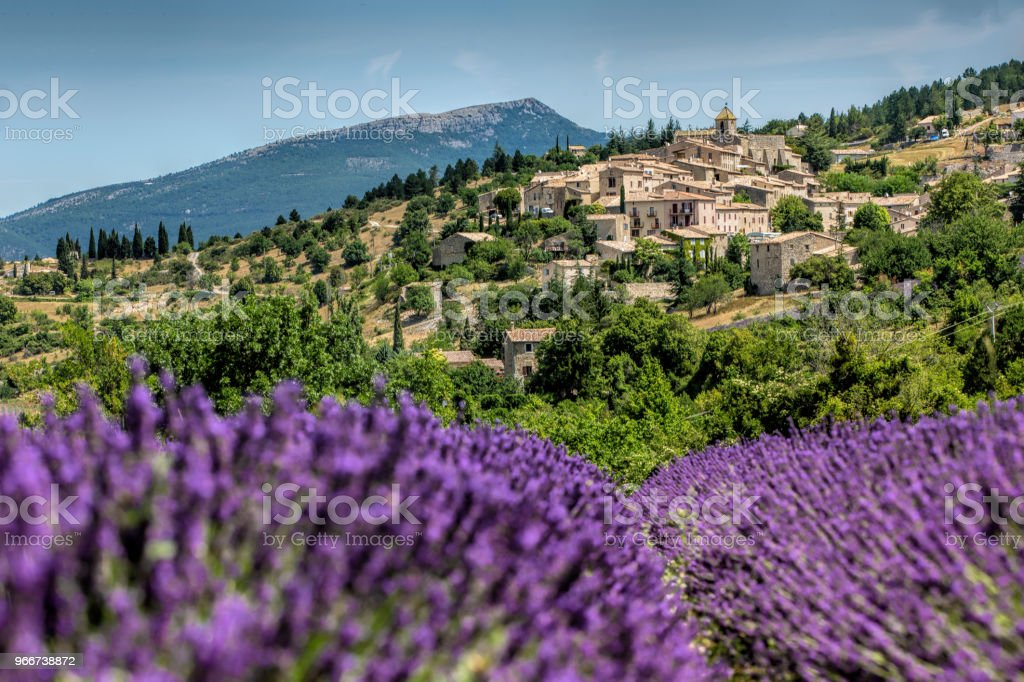 Gordes , Province France as background of the lavender field during summer stock photo