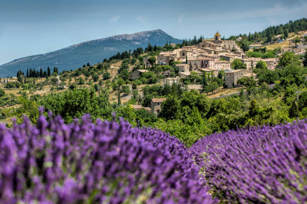 Gordes , Province France as background of the lavender field during summer Gordes , Province France as background of the lavender field during summer provence alpes cote d'azur stock pictures, royalty-free photos & images